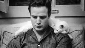[PORTFOLIO] Marlon Brando : le mythe ne s'effacejamais