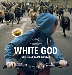 [NOTRE AVIS] White God, grand prix 2014 du CertainRegard